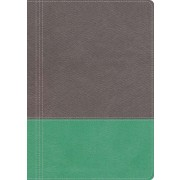NKJV, The Modern Life Study Bible, Leathersoft, Gray/Green, Indexed: God's Word for Our World