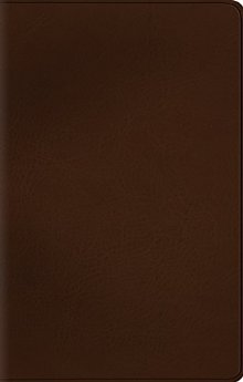 ESV Value Thinline Bible (TruTone, Deep Brown)
