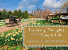 Inspiring Thoughts From The Simple Life (Life's Little Book Of Wisdom) *Scratch & Dent*