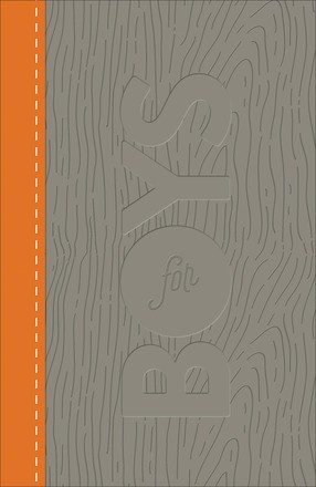 CSB Study Bible for Boys Charcoal/Orange, Wood Design LeatherTouch