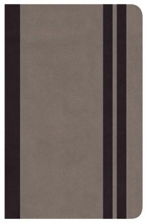 Biblia Clásica Edición Especial: Cenizo (Spanish Edition)
