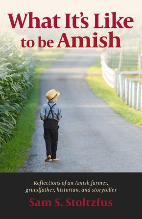 What It's Like to Be Amish