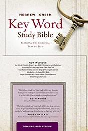 The Hebrew-Greek Key Word Study Bible: NKJV Edition, Burgundy Genuine Leather (Key Word Study Bibles) *Scratch & Dent*