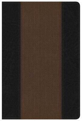 Summary Bible, NKJV Edition