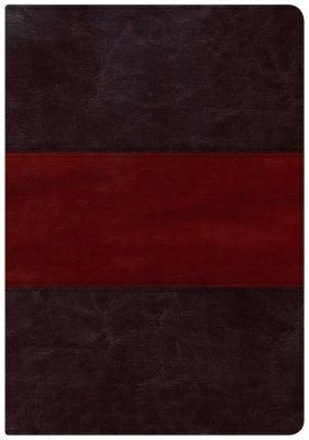 Holman Study Bible: NKJV Large Print Edition, Saddle Brown LeatherTouch