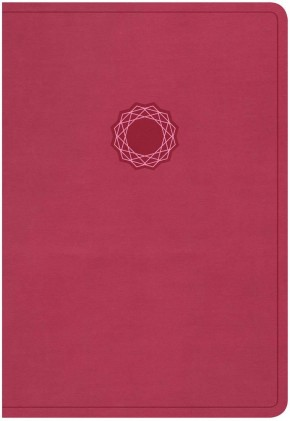KJV Deluxe Gift Bible, Pink/Light Pink LeatherTouch