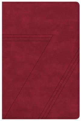 CSB Seven Arrows Bible, Crimson LeatherTouch: The How-to-Study Bible for Students