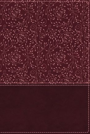 NRSV, Cultural Backgrounds Study Bible, Leathersoft, Burgundy, Comfort Print: Bringing to Life the Ancient World of Scripture