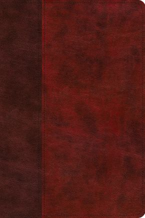 ESV Gospel Transformation Study Bible: Christ in All of Scripture, Grace for All of Life (TruTone, Burgundy/Red, Timeless Design)