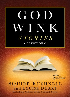 Godwink Stories: A Devotional (3) (The Godwink Series)