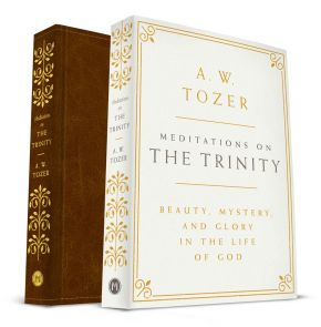 Meditations on the Trinity: Beauty, Mystery, and Glory in the Life of God *Scratch & Dent*