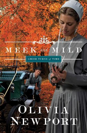 Meek and Mild (Amish Turns of Time)