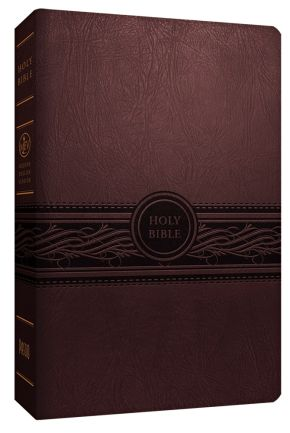 MEV Bible Personal Size Large Print Cherry Brown: Modern English Version