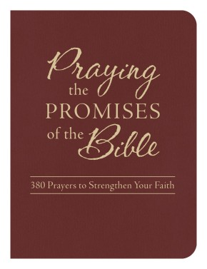 Praying the Promises of the Bible: 380 Prayers to Strengthen Your Faith *Scratch & Dent*