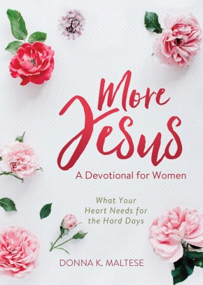 More Jesus: What Your Heart Needs for the Hard Days (A Devotional for Women) *Scratch & Dent*
