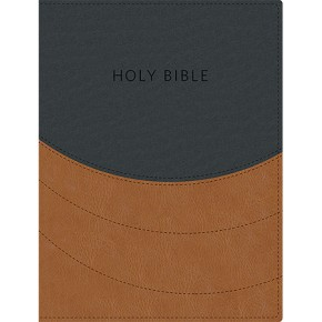 Ministry Essentials Bible: King James Version (Black/Brown, Flexisoft)
