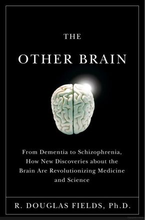 The Other Brain: From Dementia to Schizophrenia, How New Discoveries about the Brain Are Revolutionizing Medicine and Science *Scratch & Dent*