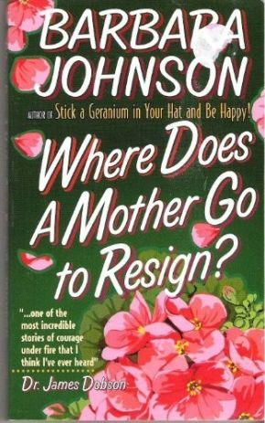 Where Does a Mother Go to Resign? *Scratch & Dent*