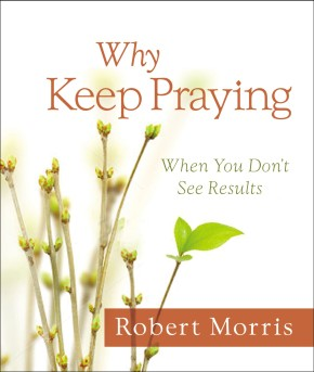 Why Keep Praying?: When You Don't See Results *Scratch & Dent*