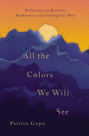 All the Colors We Will See: Reflections on Barriers, Brokenness, and Finding Our Way *Scratch & Dent*