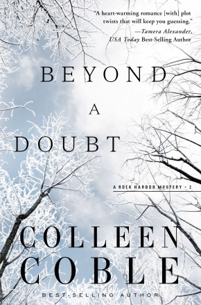 Beyond a Doubt (Rock Harbor Series)