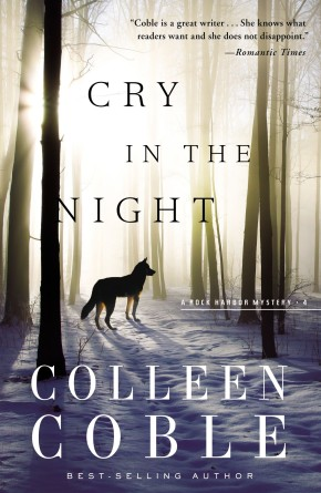 Cry in the Night (Rock Harbor Series)
