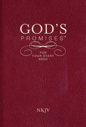 God's Promises for Your Every Need, NKJV *Scratch & Dent*