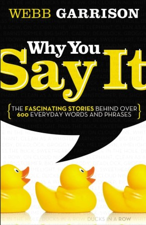 Why You Say It: The Fascinating Stories Behind over 600 Everyday Words and Phrases *Scratch & Dent*