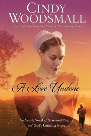 A Love Undone: An Amish Novel of Shattered Dreams and God's Unfailing Grace *Scratch & Dent*