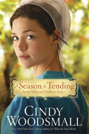 A Season for Tending: Book One in the Amish Vines and Orchards Series *Scratch & Dent*