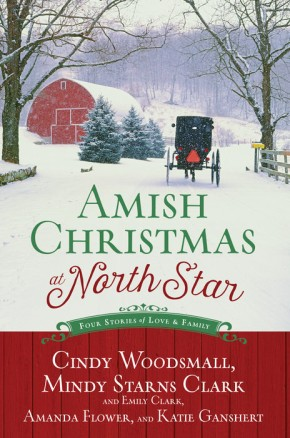 Amish Christmas at North Star: Four Stories of Love and Family *Scratch & Dent*