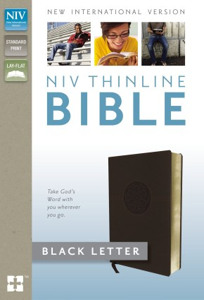NIV, Thinline Bible, Imitation Leather, Brown
