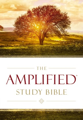 The Amplified Study Bible, Hardcover *Scratch & Dent*