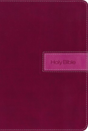 NIV, Gift Bible, Leathersoft, Pink, Indexed, Red Letter Edition