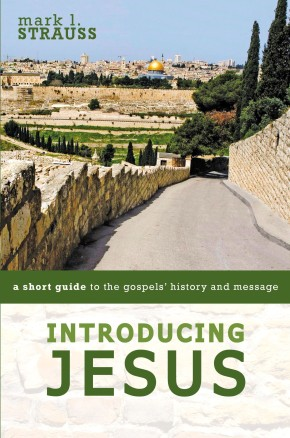 Introducing Jesus: A Short Guide to the Gospels' History and Message
